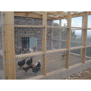 China Low price chicken coops wire mesh netting for home or farm ...