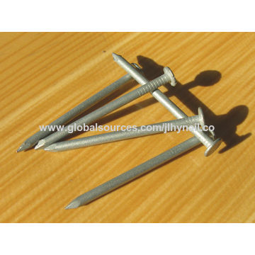 Common nail with polish export quality factory price, hot-dip galvanized common iron wire nail