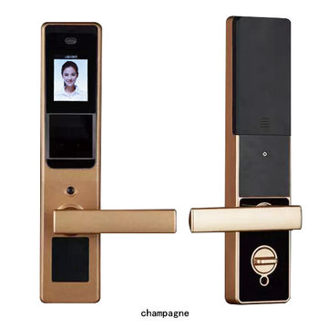 China Face recognition lock, smart lock, password lock, recognition speed is only 0.3 seconds