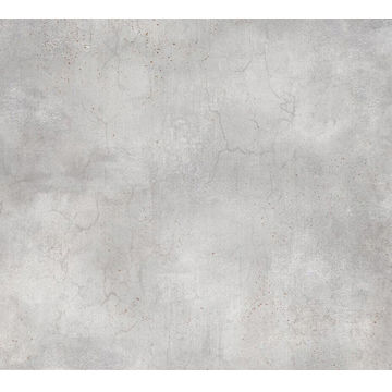 China Rustic tile with ultra water absorption <0.5%, porcelain material, sizes of 600*600mm, 800*800mm