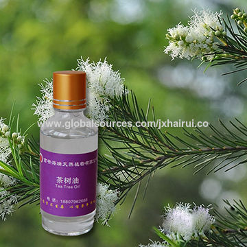 China Organic 100% Natural and Pure Tea Tree Oil for Sale