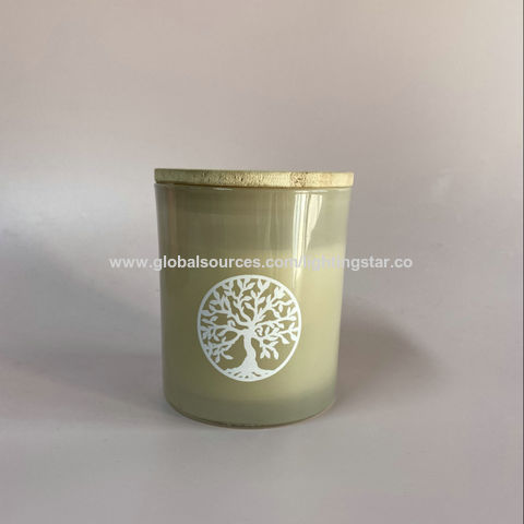 China Light Green 25 Hours Burn Time Scented Candles Fine Home Fragrance Gifts Candle Scented Candles