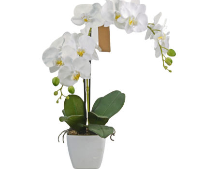 Chinahot Saling Faux Phalaenopsis Orchid Bonsai For Indooor Outdoor Decoration On Global Sources