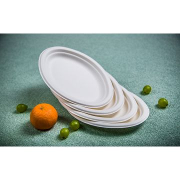 ... China oval paper plate Sugarcane Compostable Serving Tra  sc 1 st  Global Sources & Oval paper plate Sugarcane Compostable Serving Trays sugarcane ...