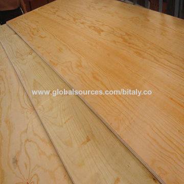CDX plywood | Global Sources