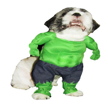 ... Philippines Superhero Pet Dog Costume Clothes Halloween Shirt Pants Apparel Supplier from Philippines- Wholesale  sc 1 st  Global Sources & Superhero Pet Dog Costume Clothes Halloween Shirt Pants Apparel ...
