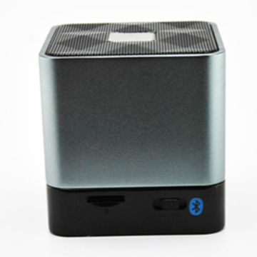 Bluetooth Speaker with Speaker Phone, Built-out Battery, Supports TF-card/FM, Stainless Steel