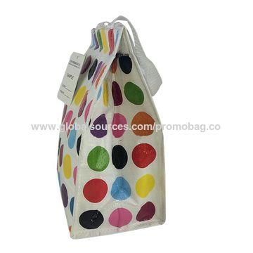 China Full color printed PP laminated woven cooler bag and aluminum foil PP bag