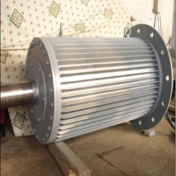 Vertical wind permanent magnet generatoralternator 300kw global china vertical wind permanent magnet generatoralternator solutioingenieria Choice Image