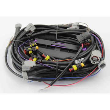 Prime Wire Harness Ecu Ac300 For 3 4 6 8 Cylinders Vehicle Global Sources Wiring Database Obenzyuccorg