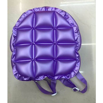 China Inflatable Bag From Shenzhen Wholer Pengzexing