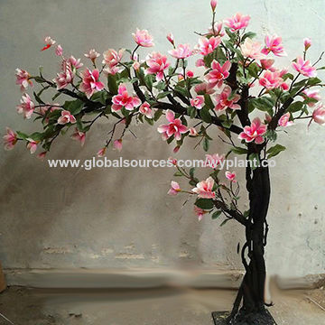 China Arch Magnolia Flower Tree From Dongguan Manufacturer Wangyang