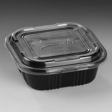 China Disposable Food Container Ideal for Fast Food Industry