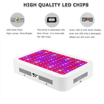 Full Grow Led 100x10 Chip Lights Spectrum Lamp 1000w For hrdtBQCxso
