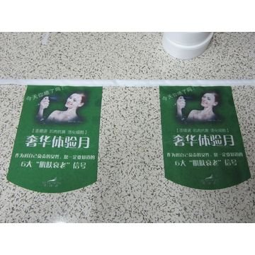 China Polyester string pennants flag bunting,digital custom design,no color limitation,fast delivery