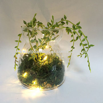 China Wholesale Glass Led Light Crafts With Fake Plant Inside For