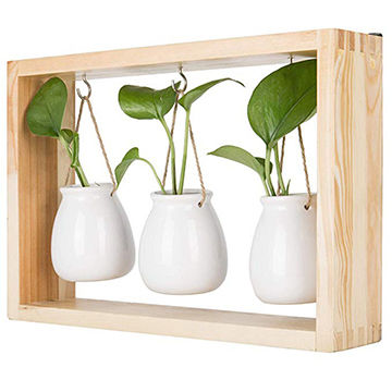 China Wall Hanging Planter Display With 3 White Ceramic Pots Natural Wood Frame