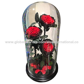 Oem Supply Gl Dome Bell Jar With