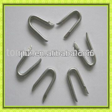 China Manufactory U Fence Staple Shaped Nail On