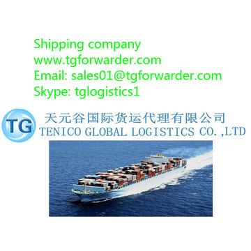 Shenzhen to Dubai Jebel Ali international shipping freight