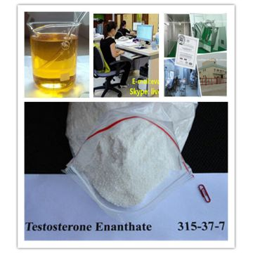 High quality Anabolic Steroid Powder Testosterone