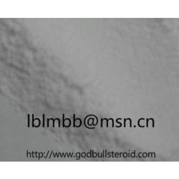Testosterone Enanthate anabolic steroid powder   Global Sources
