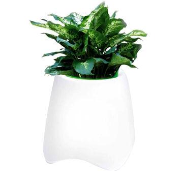 Led Pot Light Wireless Bluetooth Speaker China