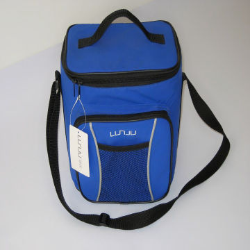 China 24 Can Insulated Disposable Cooler Bag Es Bg8011