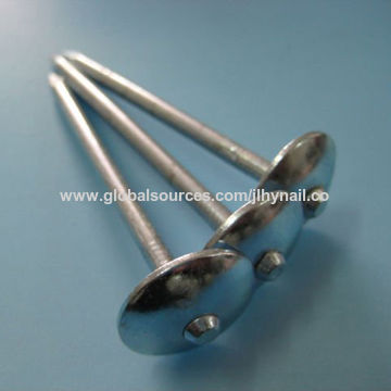 ... China Umbrella Head Roofing Nail With Electric Galvanized, Hot Dipped  Galvanized,roofing Nail With ...
