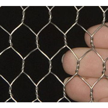 China Hexagonal chicken wire mesh netting from Trading Company ...