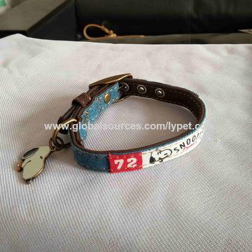Dog collar with charm