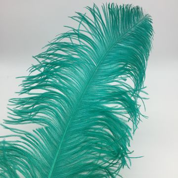 """China 22-24"""" Dyed Ostrich Feathers"""