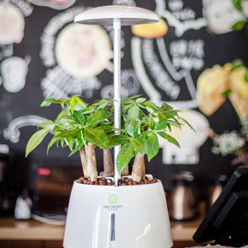 Children's gift home mini smart garden intelligent indoor hydroponic on indoor herb growing systems, indoor plant arrangements, indoor hydroponic plant systems, indoor garden lights, indoor fort kits, indoor hydroponic growing systems,