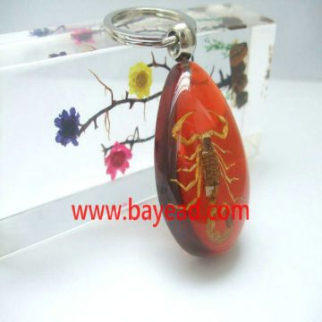 ... China Real bug Insect Amber Keychains cool gift resin craft China gift  manufacturer 66173bb67315