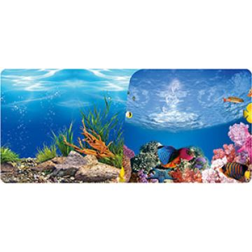 Aquarium Background Paper Double Sided Fish Tank Backdrop Global Sources