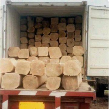 African Hardwood And Softwood Timbers Available Global Sources