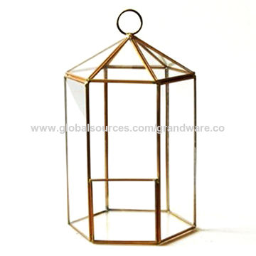 China Glass Terrarium Metal Frame For Flowers And Plan From