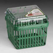 China Food Packing Container