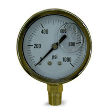 Gas Test Gauge from China (mainland)
