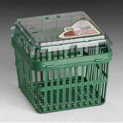 China Plastic Packaging Container