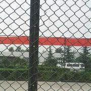 Wire Mesh and Netting from China (mainland)
