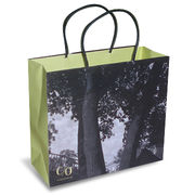 Art Paper Carrier Bag with Twist Paper String, Customized Colors are Accepted from Everfaith International (Shanghai) Co. Ltd