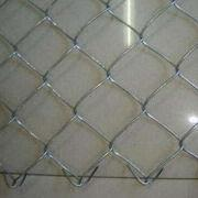 Wire Netting from China (mainland)