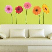 China Removable Transfer Film Vinyl Wall Sticker