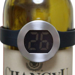 Wine Bottle Thermometer from China (mainland)