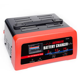 12V battery charger from China (mainland)