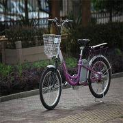 Lithium Battery Electric Bike from China (mainland)