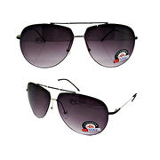 Men's Sunglasses with Popular Shiny Nickel Frame, Black Temples and Grad Smoke Lens