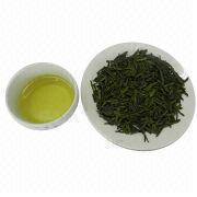 Green Tea Manufacturer
