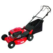 Lawn mower from China (mainland)